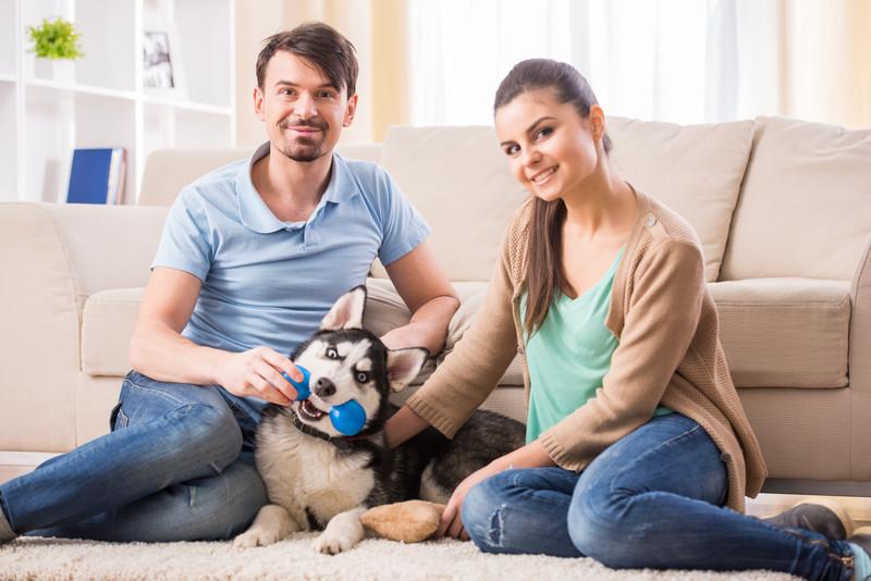 É possível expulsar animal do condomínio